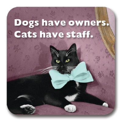Cats Have Staff Coaster<br>(Pack of 10)