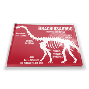 Brachiosaurus Fridge Magnet<br>(Pack of 10)