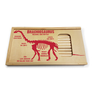Brachiosaurus Pencil Sets<br>(Pack of 5)