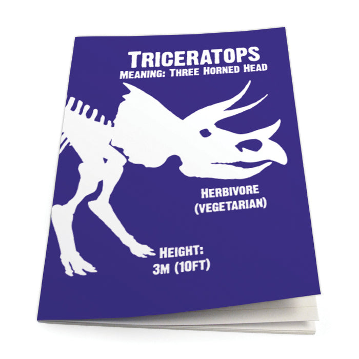 Triceratops Exercise Book<br>(Pack of 10)