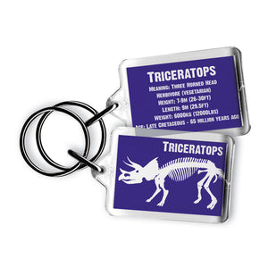 Triceratops Acrylic Keyring<br>(Pack of 10)