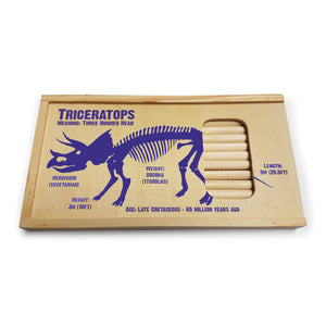 Triceratops Pencil Sets<br>(Pack of 5)