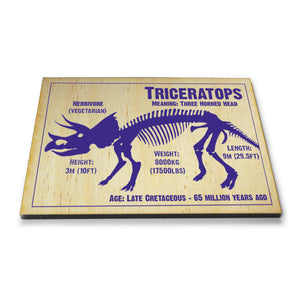 Triceratops Wooden Postcard<br>(Pack of 10)