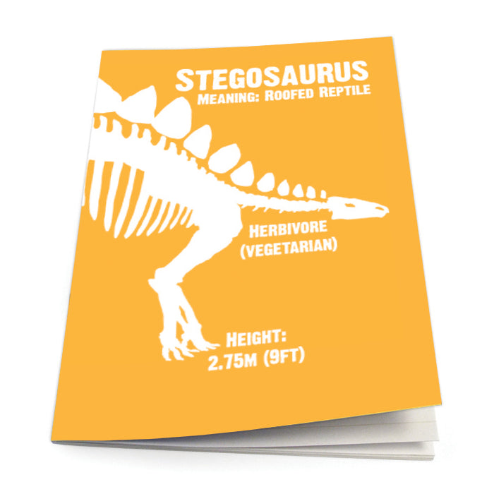 Stegosaurus Exercise Book<br>(Pack of 10)