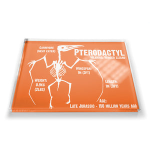 Pterodactyl Fridge Magnet<br>(Pack of 10)