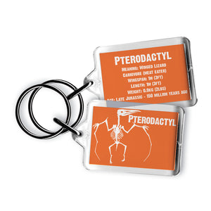 Pterodactyl Acrylic Keyring<br>(Pack of 10)