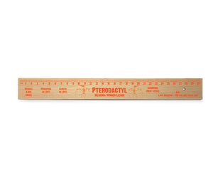 Pterodactyl Wooden Ruler<br>(Pack of 10)