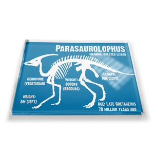 Parasaurolophus Fridge Magnet<br>(Pack of 10)
