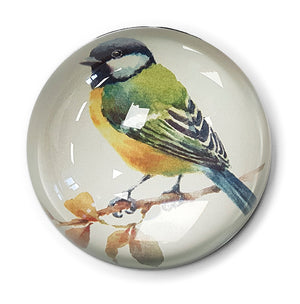 Blue Tit - Paperweight<br>(Pack of 5)