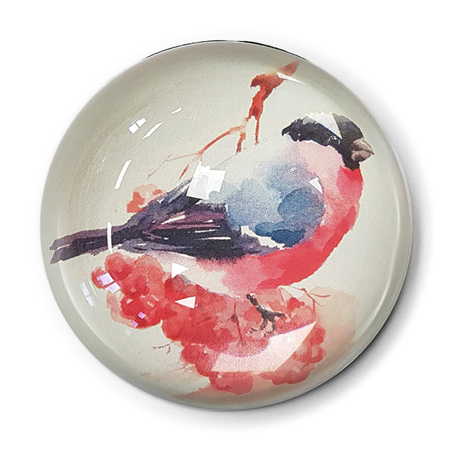 Bullfinch - Paperweight<br>(Pack of 5)