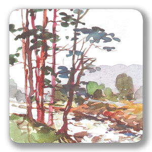 Scots Pine Coaster<br>(Pack of 10)