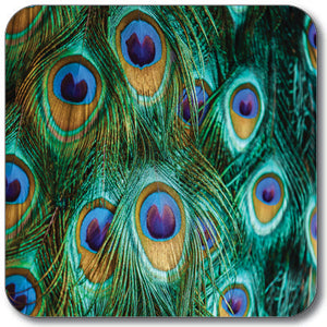 Peacock Feathers Coaster<br>