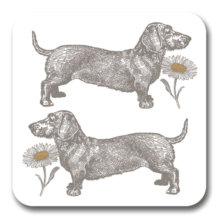 Dog and Daisy Potstand<br>(Pack of 5)