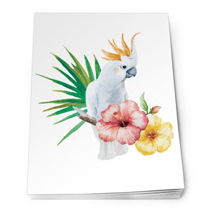 Parrot Notepad<br>(Pack of 10)