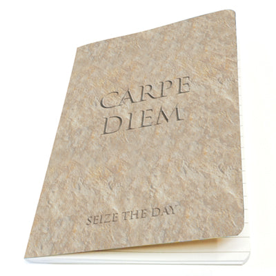 Carpe Diem (Sieze the Day) Exercise Book<br>(Pack of 10)