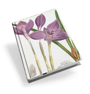 Crocus Banaticus - Hardback Journal<br>(Pack of 5)