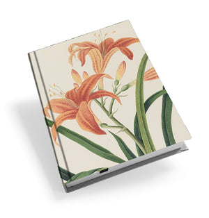 Orange Day Lily - Hardback Journal<br>(Pack of 5)