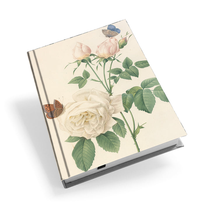 Hume's Blush Tea-Scented China Rose - Hardback Journal<br>(Pack of 5)