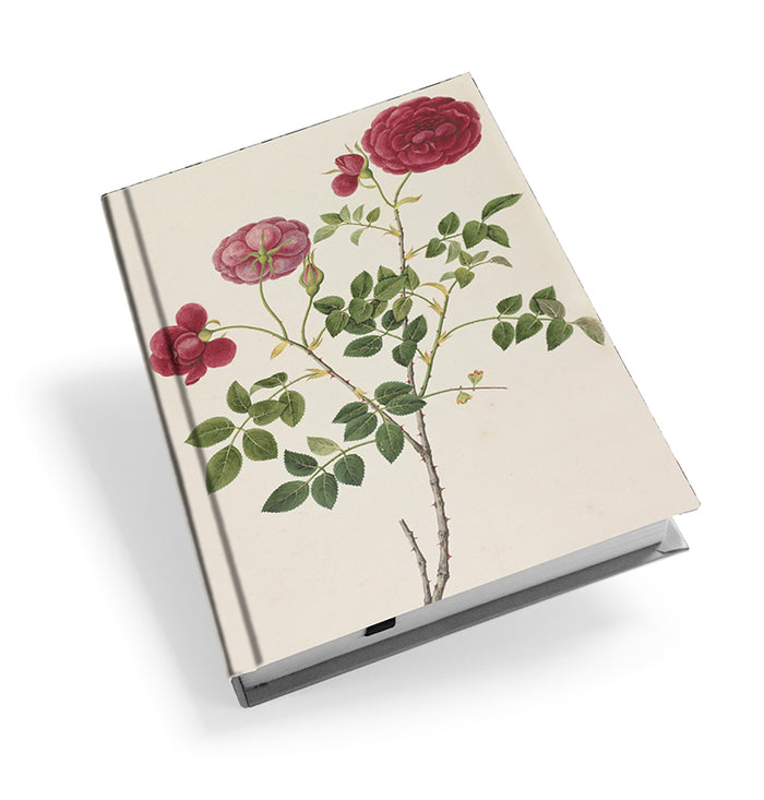 Rose - Hardback Journal<br>(Pack of 5)