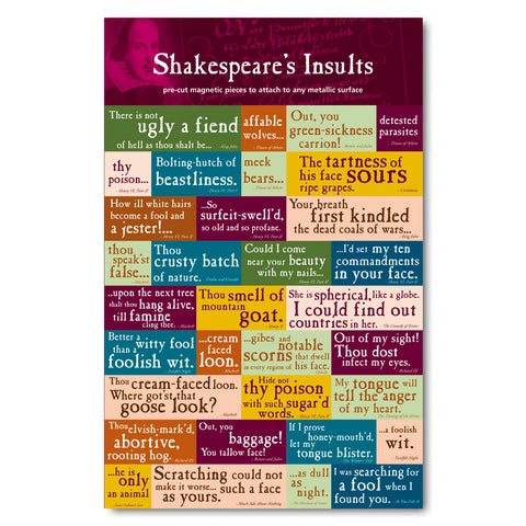 Insults Magnet Set<br>(Pack of 5)