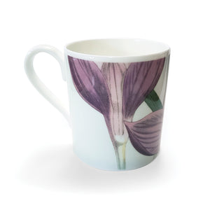 Crocus Banaticus - Bone China Mug<br>(Pack of 6)