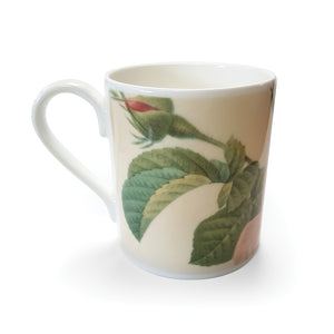 Centifolia Rose - Bone China Mug<br>(Pack of 6)