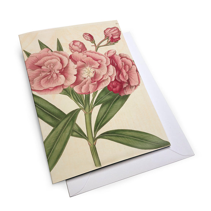Mixed Floral - Notecard Set (Pack of 5)