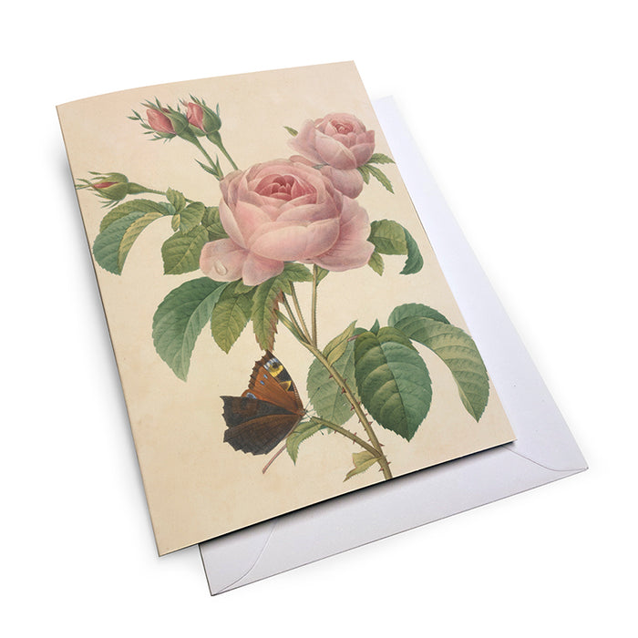 Mixed Roses - Notecard Set (Pack of 5)