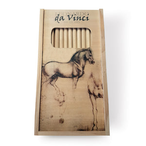 Study of a Horse World Wooden Pencil Set<br>(Pack of 5)