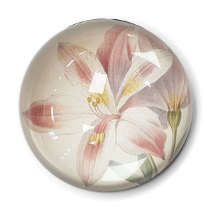 Peruvian Lily Paperweight<br>(Pack of 5)