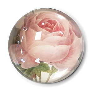 Centifolia Rose Paperweight<br>(Pack of 5)