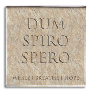 Dum Spiro Spero (While I Breathe, I Hope) Fridge Magnet<br>(Pack of 10)