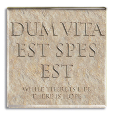 Dum Vita Est Spes Est (Life, There is Hope) Fridge Magnet<br>(Pack of 10)