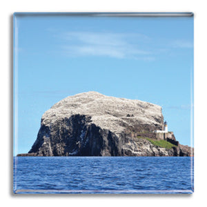 Bass Rock Fridge Magnet<br>(Pack of 10)