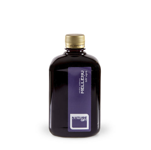 Blueberry syrup (plastic bottle) 0.5l