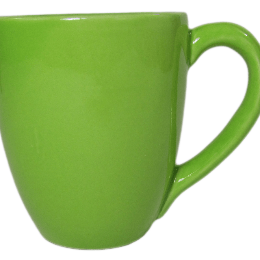 Stoneware Tea/Coffee Mug - Green
