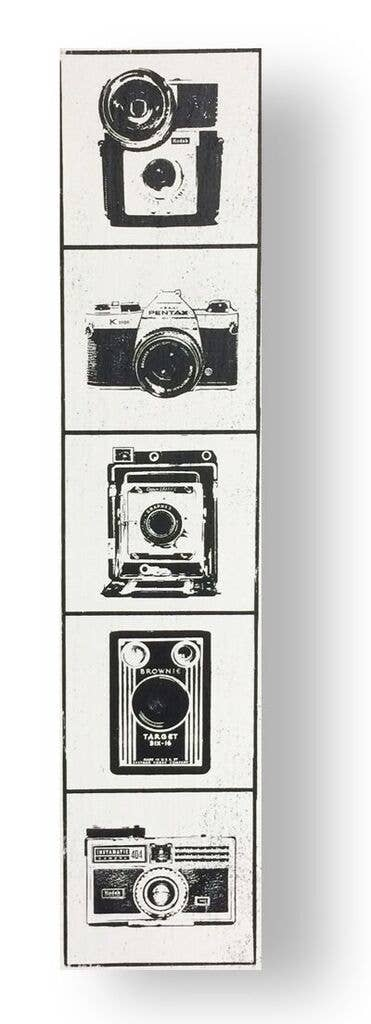 Cameras Vertical Sign (6x31)