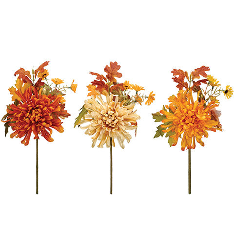 Fall Mum Pick