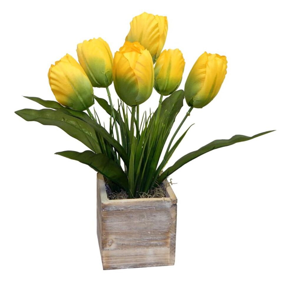 Yellow Tulips in Natural Wooden Box