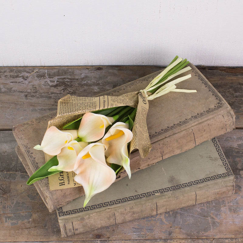 Cream Calla Lily Bundle in Paper
