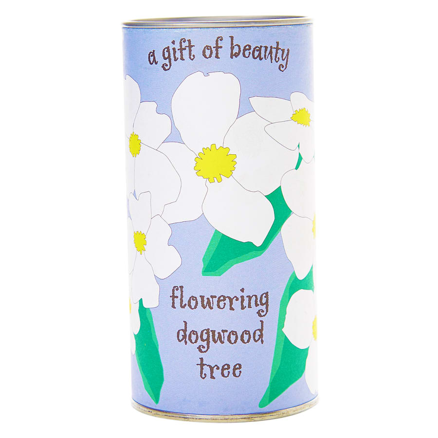 Flowering Dogwood - Seed Grow Kit