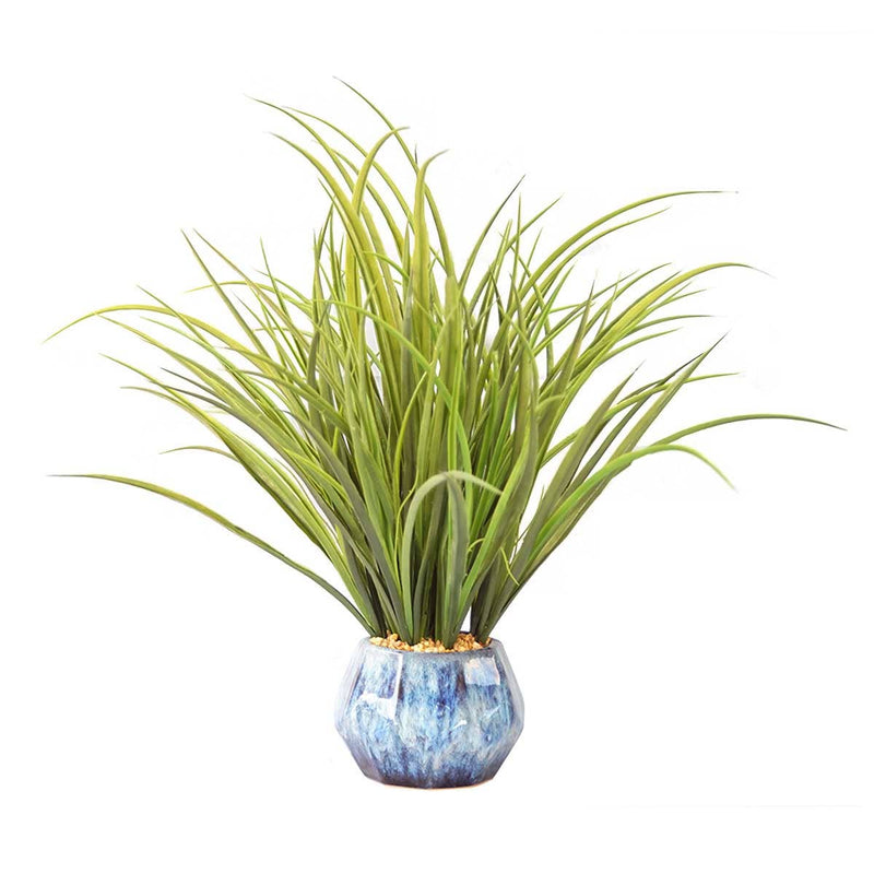 "Onion Grass in Ceramic Pot with USB Charging Station (17"")"