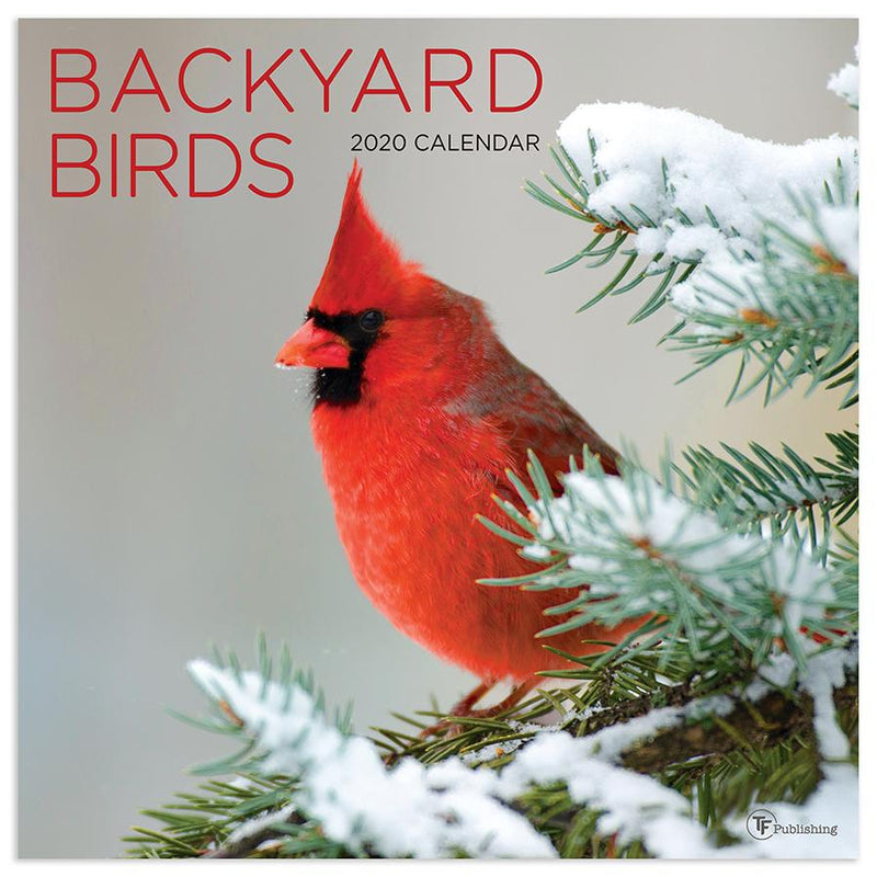 Backyard Birds Calendar