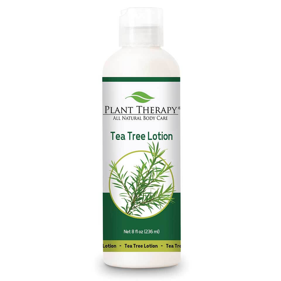 Tea Tree Lotion - 8 oz.