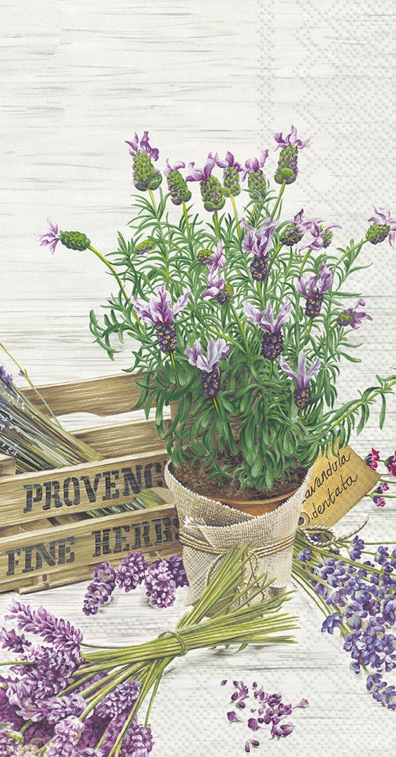 The Flavor of Provence Guest Towel (Napkins Pack)