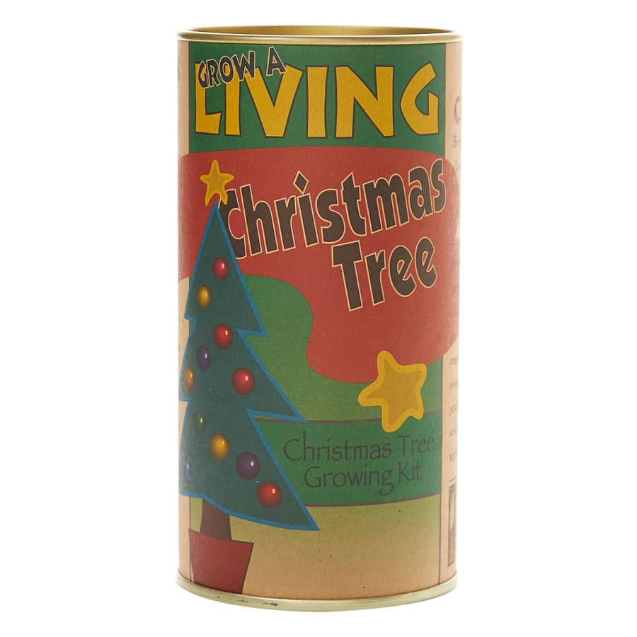Grand Fir Christmas Tree - Seed Grow Kit