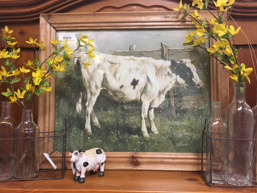 Dairy Cow Framed Art
