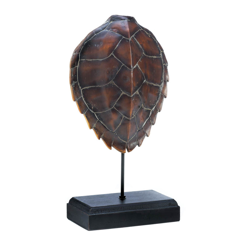 Spiny Turtle Shell Museum Decor