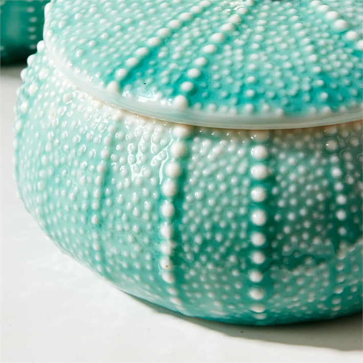 Sea Urchin Trinket Box