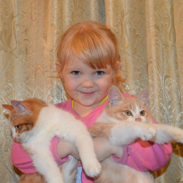 adorable little girl smiling at camera while holding two kittens in her arms